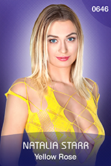 Natalia Starr: Yellow Rose